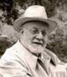 Matisse head